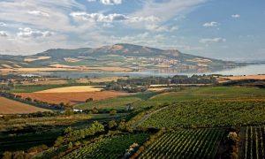 Pálavské vrchy - dovolená jižní Morava